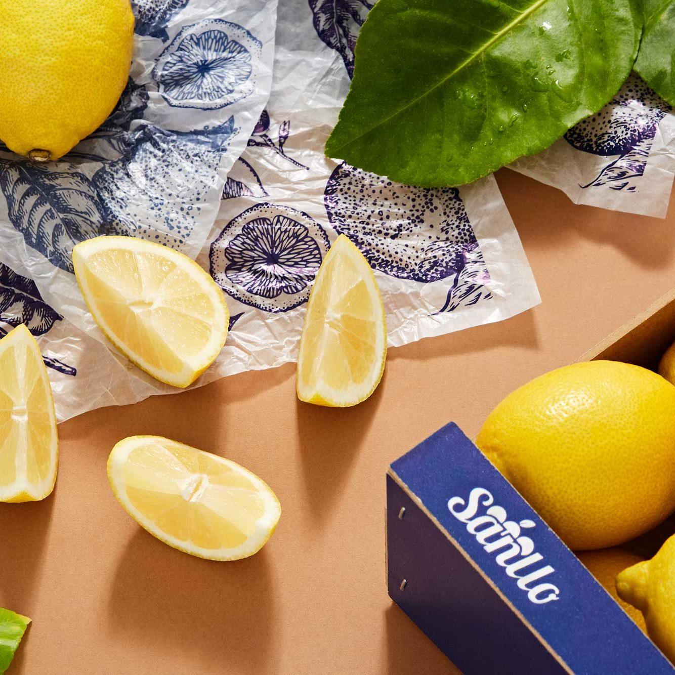 limon-sanllo-1